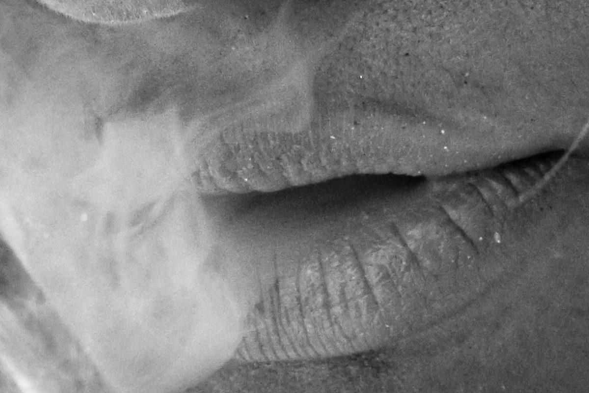 océ_smoke-11